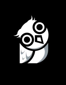 Night Owl Media
