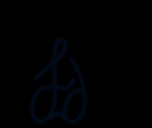 Fidens Web Design Toronto