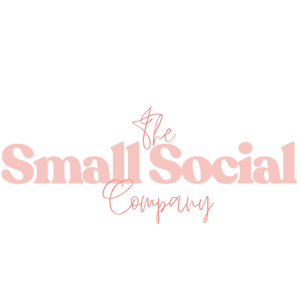 The Small Social Company