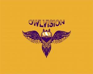 OwlVision VR