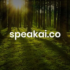 Speak AI Inc.