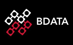 B Data Solutions Inc.